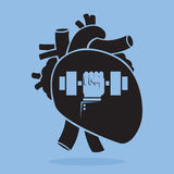 Weight-lifting in your Heart. Royalty Free Stock Photo