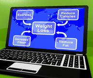 Weight Loss Diagram On Laptop Royalty Free Stock Image