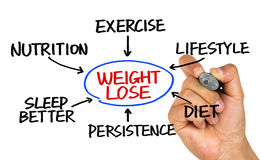 Weight loss flowchart hand drawing on whiteboard Stock Image