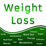 Weight Loss Heading and Keywords - Green. An image with Weight Loss text and related keywords vector illustration