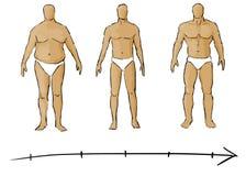 Weight loss. Illustration showing progress of weight loss stock illustration