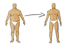 Weight loss. Illustration showing progress of weight loss vector illustration