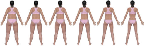 Weight Loss Progression Rear View Stock Photos