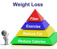 Weight Loss Pyramid Showing Fiber Exercise Fat Stock Image