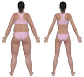 Weight Loss Before And After Rear View. Before and after rear view illustration of a overweight female and a healthy weight female after dieting and exercising Royalty Free Stock Images