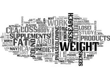 Are Weight Loss Supplements Worth Itword Cloud Stock Photos