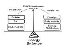Energy Balance. Weight maintenance and Energy Balance Royalty Free Stock Photo