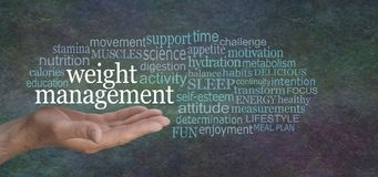 Weight Management for MEN Word Tag Cloud royalty free stock photos