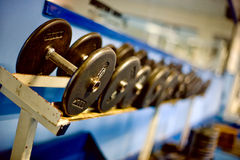 Weight Rack. Weights and Free-Weights in a Gym stock photos