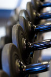 Weight rack Royalty Free Stock Images