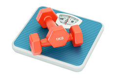 Weight scale with fitness dumbbells, 3D rendering. Weight scale with fitness dumbbells Stock Photography