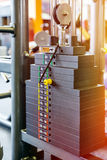 Weight of stack in gym Stock Photo