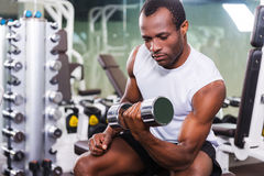 Weight training. Stock Photography