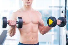 Weight training. Royalty Free Stock Photography