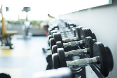 Weight Training Equipment. Dumbbells in modern sports club Stock Photos