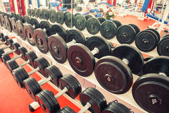 Weight training equipment. In a gym room Royalty Free Stock Photos