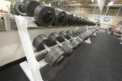 Weight Training Equipment Stock Image