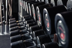 Weight Training Equipment. Sports dumbbells in modern sports club. Weight Training Equipment Royalty Free Stock Photos