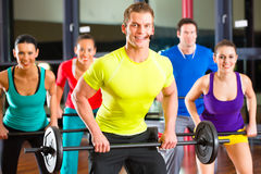 Weight training in the gym with dumbbells Royalty Free Stock Photo