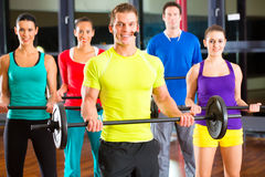 Weight training in the gym with dumbbells Stock Image