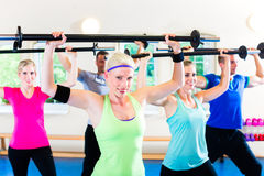 Weight training in the gym with dumbbells Royalty Free Stock Images