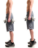 Weighted Calf Raise Royalty Free Stock Photo
