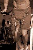 Weighted dips sepia Royalty Free Stock Photography