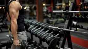 Weightlifter, der mit großem Dummkopf in der Turnhalle, bereitend für Wettbewerb ausarbeitet vor lizenzfreie stockfotografie