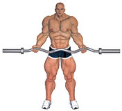 Weightlifter training Stock Image