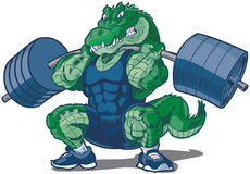 Weightlifting Alligator Mascot Cartoon Illustration Stock Photography