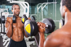 Weightlifting. Handsome young African man training with dumbbells in gym while standing against mirror Royalty Free Stock Images