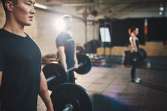 Weightlifting is key to getting stronger. Fit young men lifting barbells looking focused, working out in a gym with other people Royalty Free Stock Images