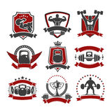 Weightlifting, powerlifting gym sport club icons. Weightlifting sport icons. Powerlifting gym vector isolated icons set of weightlifter athlete muscle torso and Stock Images