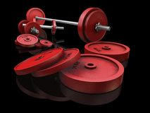 Weightlifting weights Stock Image
