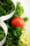 Weightloss Royalty Free Stock Photography
