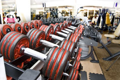 Free Weights Stock Photography - 4079032