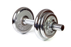 Weights (dumbbell)isolated Stock Photo