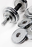 Weights or dumbbells Stock Photography