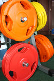 Weights, dumbells in the gym Royalty Free Stock Photos
