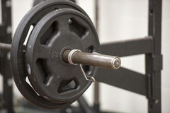 Weights. Exercise weights in a gym Royalty Free Stock Photo
