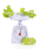 Weights with green salad. Kitchen weights with salad isolated on white Royalty Free Stock Photos