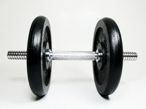 Free Weights Gym Stock Images - 10949914