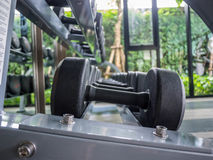 Weights, many black dumbbell in fitness room (gym, fitness, equipment) Stock Photo
