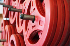 Weights. Many Red dumbbell in fitness room Royalty Free Stock Images