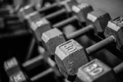 Weights on rack Stock Images