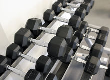 Weights. Rows of dumbbells on a rack Stock Photos