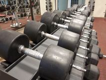 Weights.Rows of dumbbells on a rack. royalty free stock photography