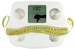 Weightscale with tape measure bow . fat Royalty Free Stock Image