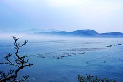 Weihai Bay Royalty Free Stock Image