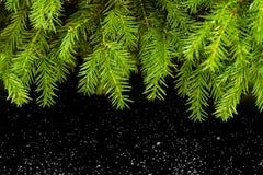 Weihnachten, baum, hintergrund, inverno, jahr dei neues immagine stock libera da diritti